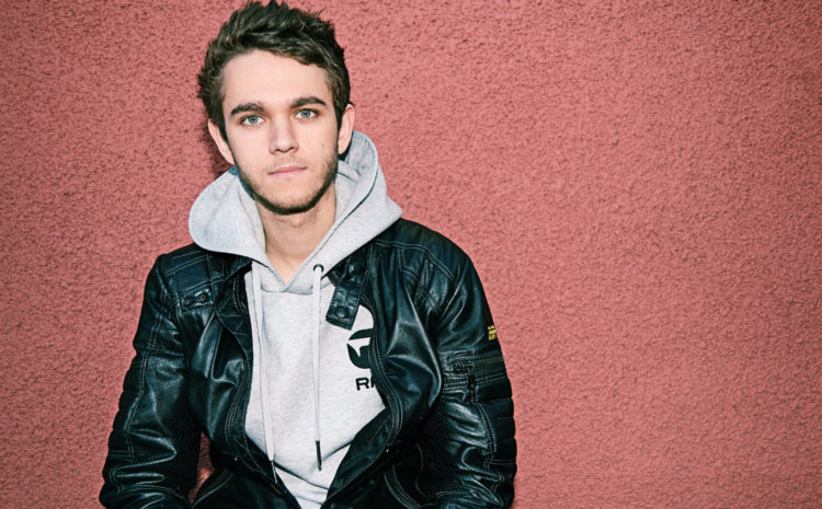 Zedd é diagnosticado com perda de audição Grammy